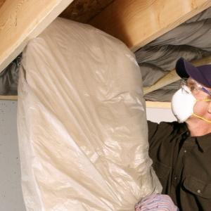 Alpha Pest Management Insulation For Your Home